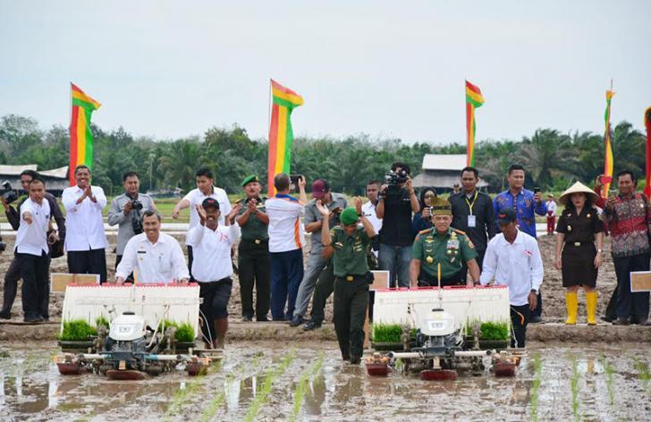Penanaman Padi Perdana Panglima TNI di Bungaraya Sukses