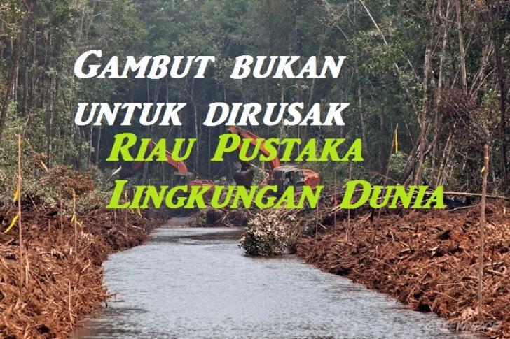 Pentingnya Lingkungan, Pemprov Riau Komitmen Pulihkan Gambut