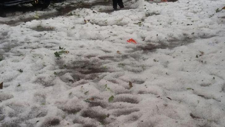 Hujan Es Sebesar Kelereng Terjadi di Bandung Sisakan Pohon dan Papan Reklame Tumbang