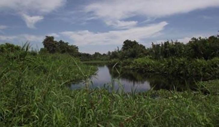 Danau Janda Gatal di Rohil Bersiap Pikat Wisatawan