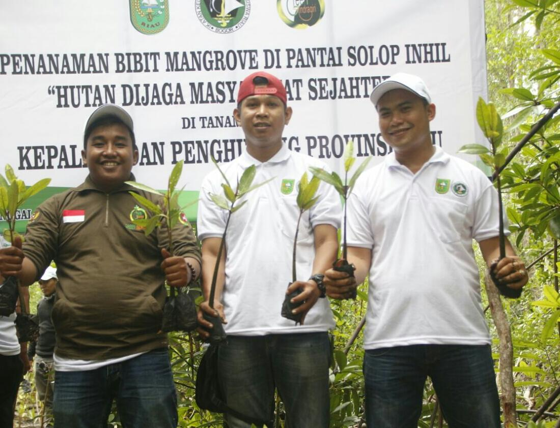 BP3R, IKPMR dan Ormas Green Indragiri Laksanakan Penanaman Pohon Mangrove di Pantai Solop