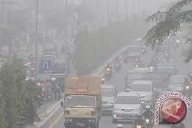 Sumsel-Jambi Ekspor Asap ke Riau