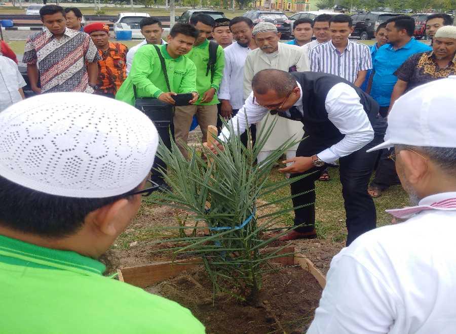 Wow, Satu Pohon Kurma Penghasilannya Sebanding 1 Hektare Sawit