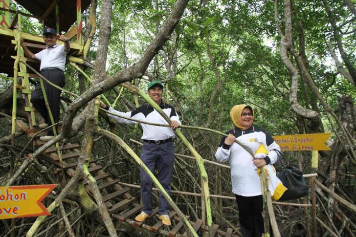 Destinasi Wisata, Siak Hadirkan Ekowisata Mangrove, Berikut Lokasi-lokasinya