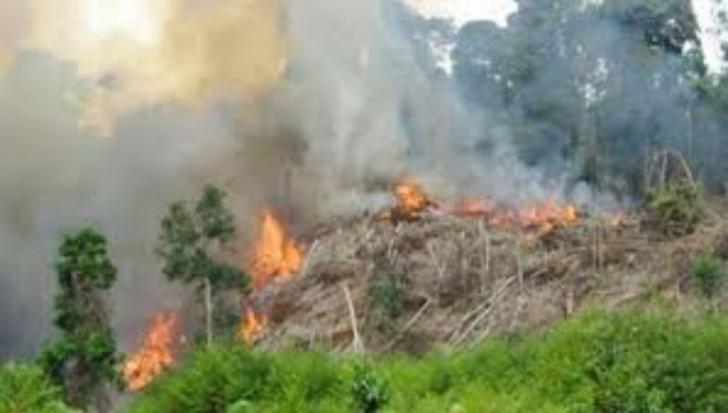 Masyarakat Dilarang Bakar Hutan dan Lahan, Kapolsek Batu Hampar: Sanksinya Dipenjara